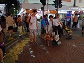 chinese dog1 mong Kok - June 2014